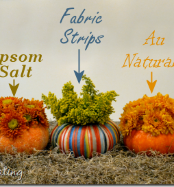 DIY Fall Home Decorations