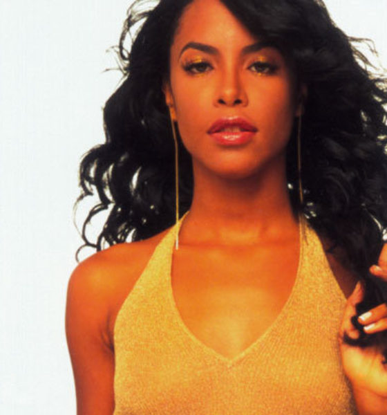 Aaliyah Cosmetic Collection Coming Soon!